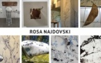 Rosa Najdovski, Exposition Attaches d'encre. Dessins et Installations