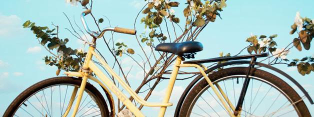 Faites graver votre vélo gratuitement !