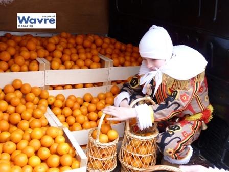 Le Carnaval de Wavre 2011 !