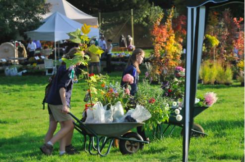 La Fête des Plantes et du Jardin d'Aywiers à Lasne