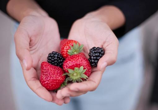 Nivelles : Fête des petits fruits... et des légumes de saison