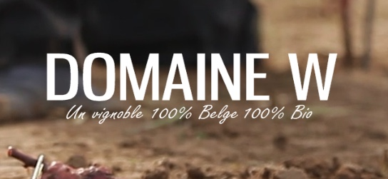 En décembre 2019, Dimitri et Sophie Wautier ont inauguré le chai et salon W du Domaine W à Saintes!