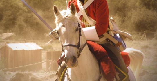 Les célèbres Royal Scots Greys participeront aux commémorations de la Bataille de Waterloo !