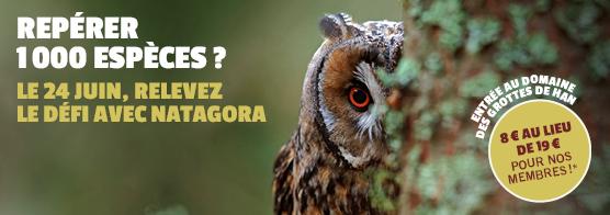 Natagora et le Domaine des Grottes de Han lancent l'incroyable défi des 1000 espèces !