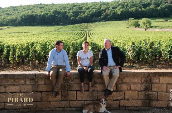 Du 3 au 11 juin, c'est la semaine du bio Chez Vins Pirard !