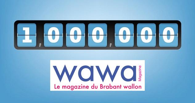 Le site web WaWa Magazine c'est déjà plus de 1.000.000 de pages vues en 2017 !