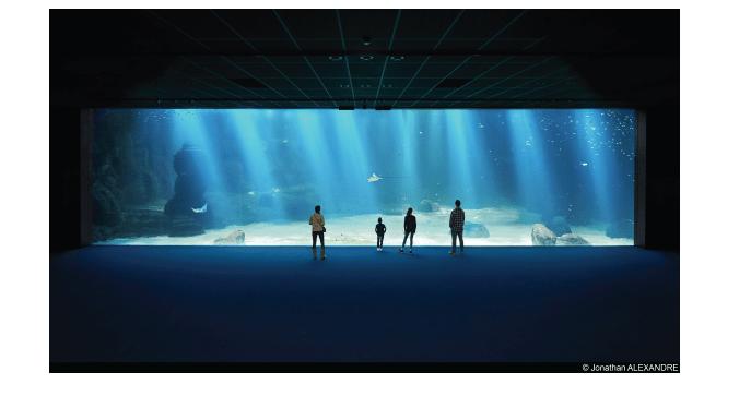 NAUSICAA : J-30 Avant de devenir l'un des plus grands aquariums du monde