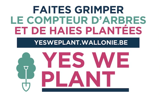 Le Béwé à nous de jouer ! Yes we plant : 4 000 km de haies ou 1 million d'arbres