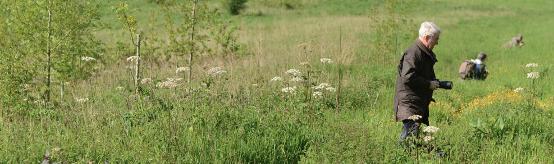 Natagora organise 3 formations nature en Brabant wallon dès septembre : Ornithologie, herpétologie et photographie