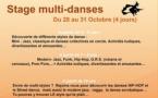 Nivelles : Stage Multi-danses !