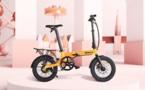 BW SUCCESS : La Venilu-Bike success story, suite et… pas fin!