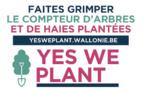 Le Béwé à nous de jouer ! Yes we plant : 4 000 km de haies ou 1 million d'arbres