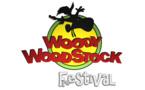 27 avril 2013 : 7ème édition du Woody Woodstock festival à Nivelles