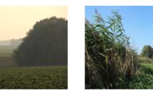 Deux nouvelles réserves naturelles en Brabant wallon !