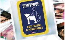 Wavre souhaite la bienvenue aux chiens d'assistance